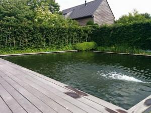 zwemvijver